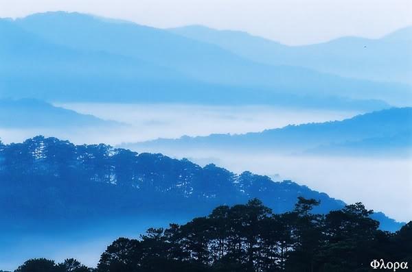 Phố núi mờ sương