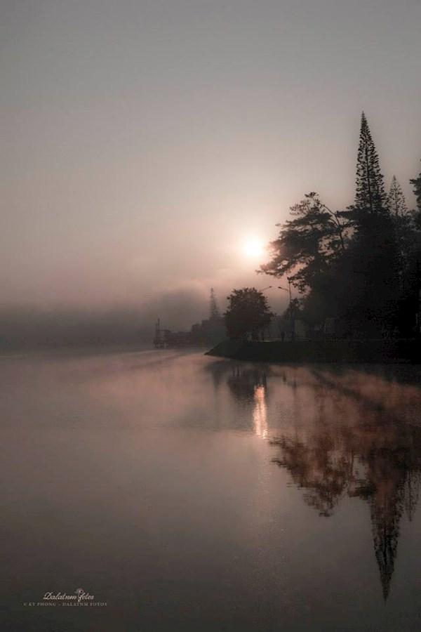 Trong sương sớm