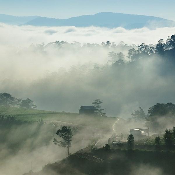 Đà Lạt sớm mai - Photo: easyshot