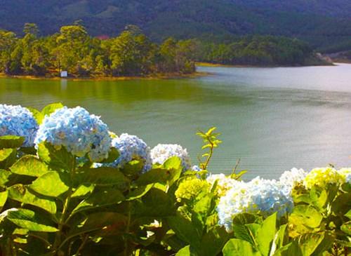 Hồ-Tuyền-Lâm.jpg