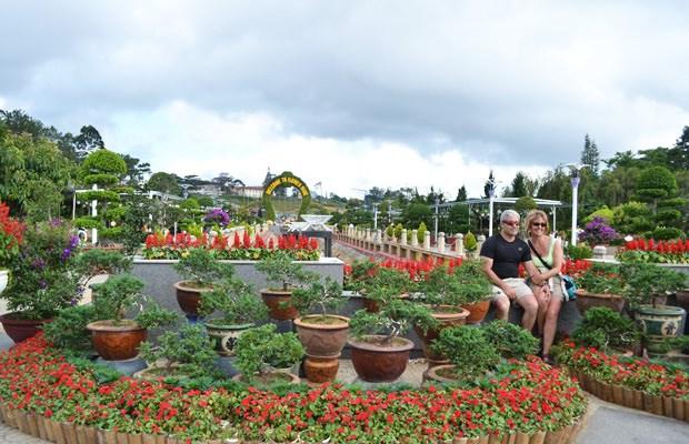 Vườn hoa T.p Đà Lạt nơi du khách thường đến để chiêm ngưỡng vẻ đẹp các loài hoa xứ lạnh