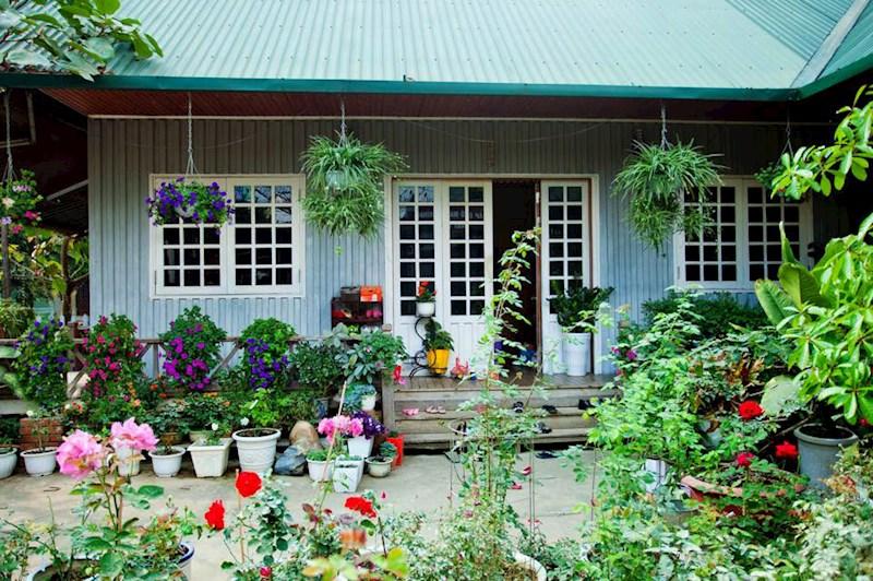 Nhà gỗ giữa rừng hoa